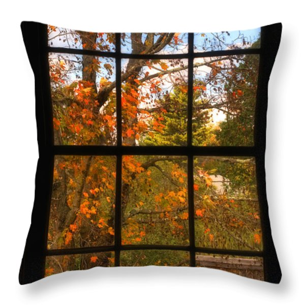 Autumn's Palette Throw Pillow by Joann Vitali