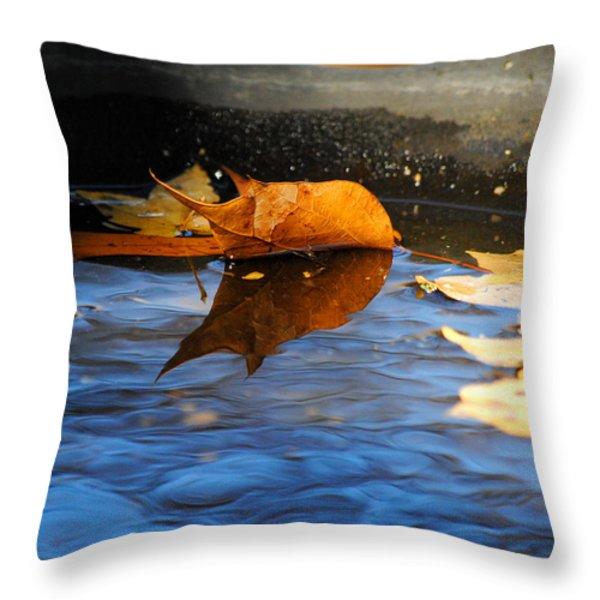 Autumn's Reflection Throw Pillow by Jai Johnson
