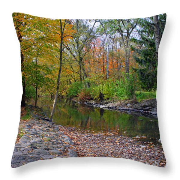 Autumn's Splendor Throw Pillow by Kay Novy