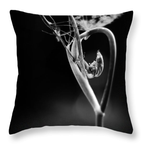 B Is For Bronze Fennel Throw Pillow by Rebecca Sherman