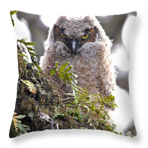 Baby Owl Throw Pillow by Athena Mckinzie