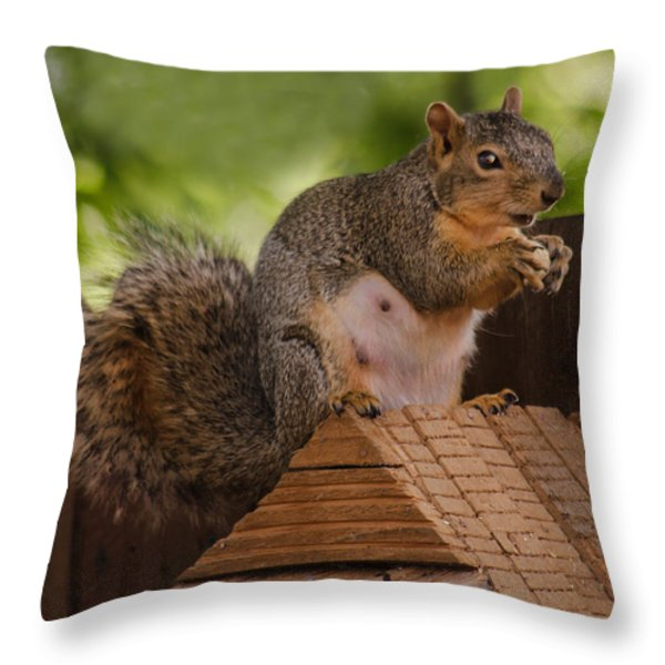 Back Yard Pet Throw Pillow by Robert Bales