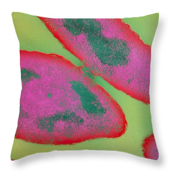 Bacteria, Sexual Reproduction Throw Pillow by Omikron