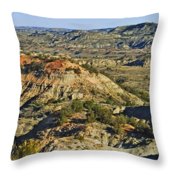 Bad Lands  Throw Pillow by Michael Peychich