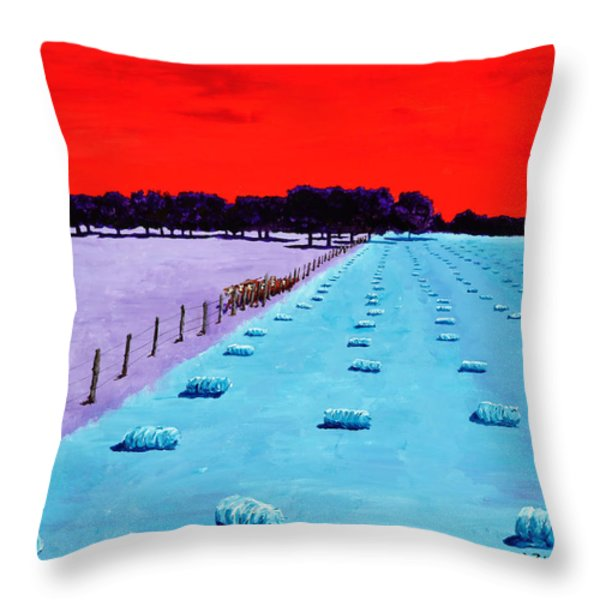 Baled Hay Throw Pillow by Randall Weidner
