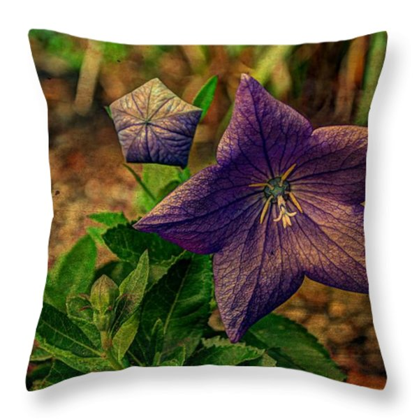 Balloon Flower - Antiqued Throw Pillow by Michael Garyet