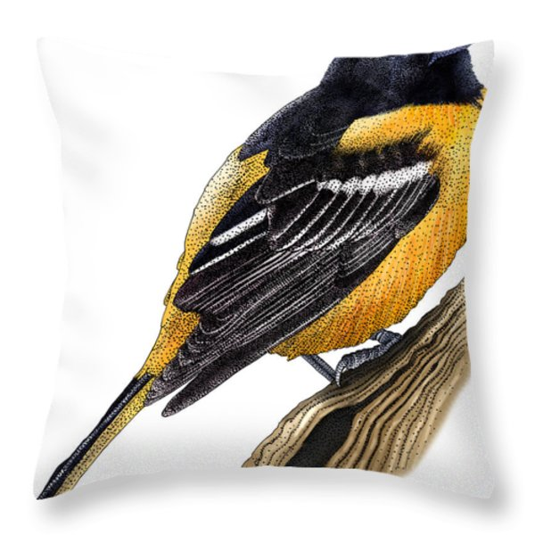 Baltimore Oriole Throw Pillow by Roger Hall and Photo Researchers