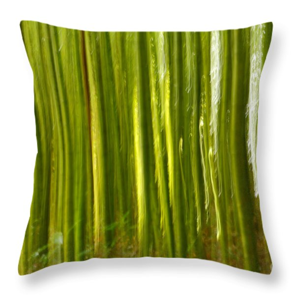 Bamboo Abstract Throw Pillow by Gaspar Avila