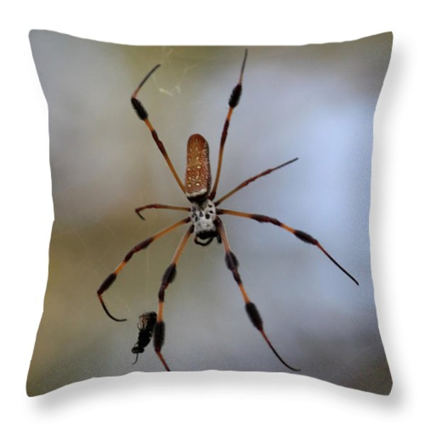 Banana Spider With Prey Throw Pillow by Carol Groenen