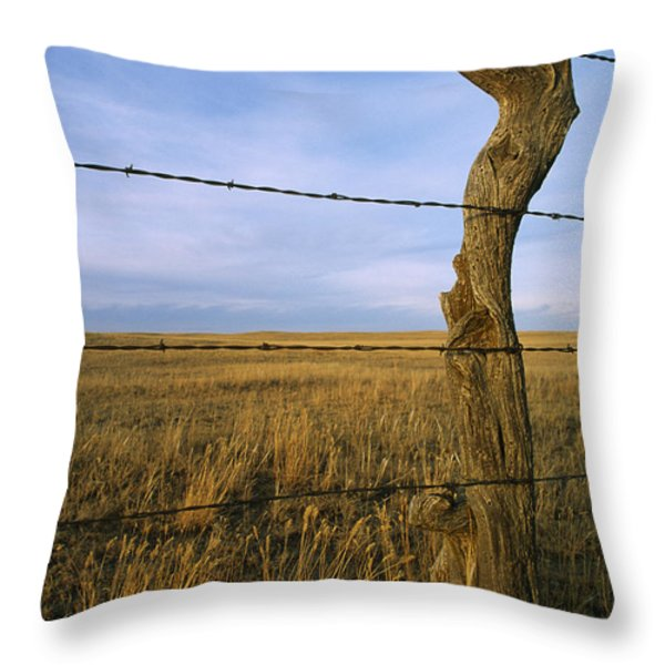 Barbed Wire Fence Along Dry Creek Road Throw Pillow by Gordon Wiltsie