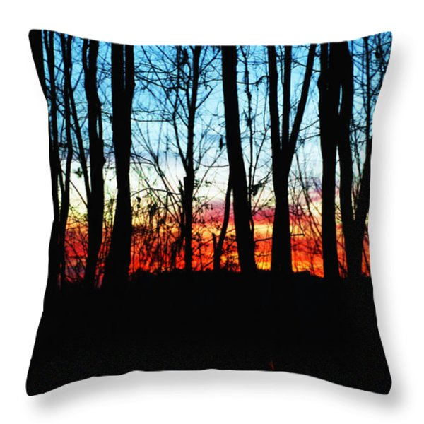 Bare Trees At Sunset 2 Throw Pillow by Skip Nall