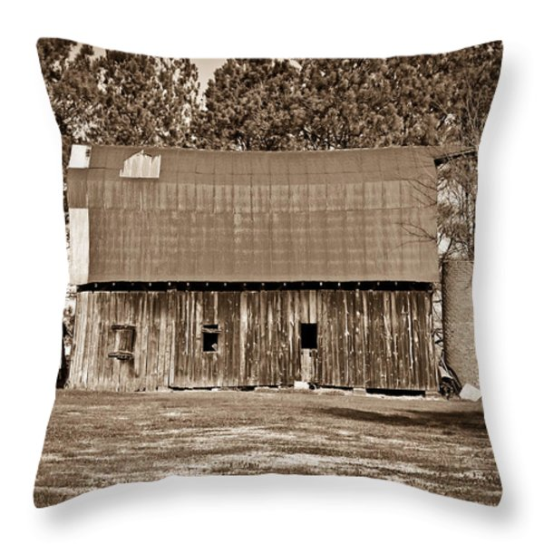 Barn And Silo 2 Throw Pillow by Douglas Barnett