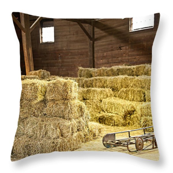Barn with hay bales Throw Pillow by Elena Elisseeva