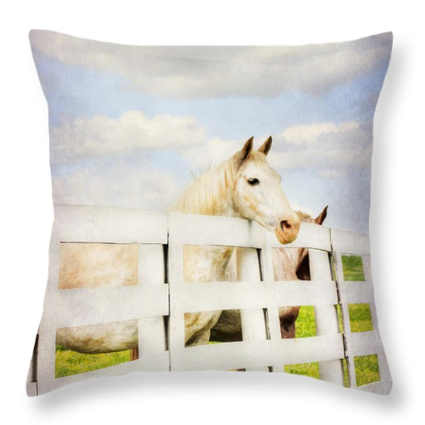 Barn Yard Dreamer Throw Pillow by Darren Fisher