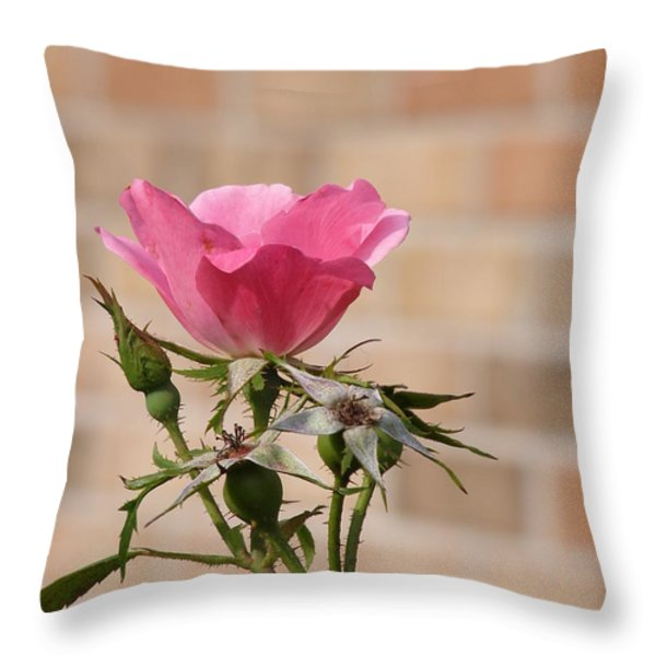 Be Magnificent Stand Out Throw Pillow by Sandi Floyd