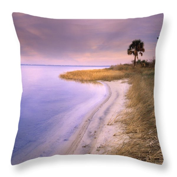 Beach Along Saint Josephs Bay Florida Throw Pillow by Tim Fitzharris
