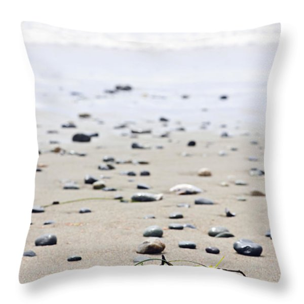 Beach Detail On Pacific Ocean Coast Of Canada Throw Pillow by Elena Elisseeva
