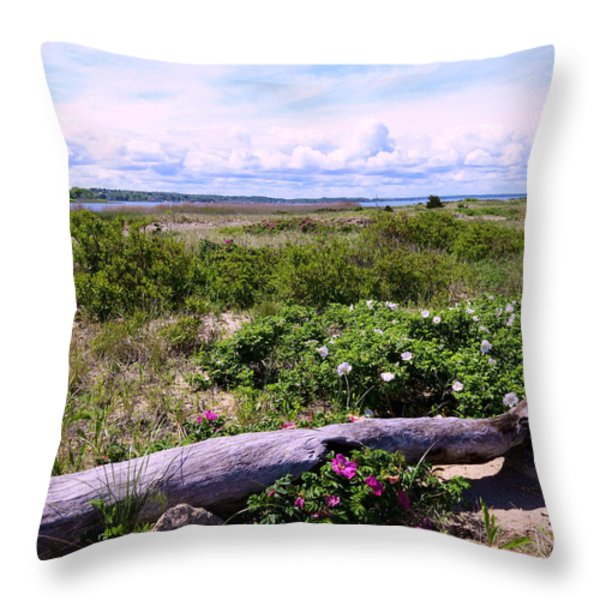 Beach Roadscape Throw Pillow by Janice Drew