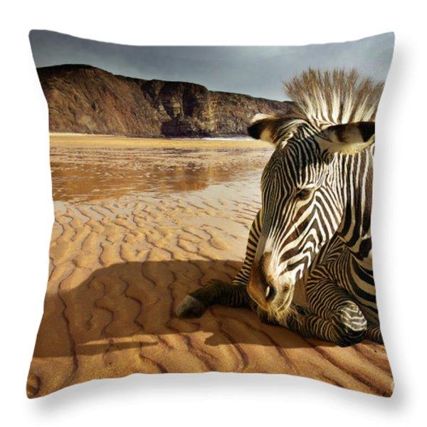 Beach Zebra Throw Pillow by Carlos Caetano