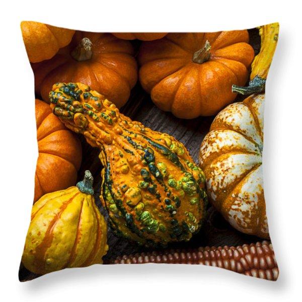 Beautiful autumn Throw Pillow by Garry Gay