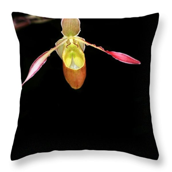 Beautiful Lady Slipper Orchid Throw Pillow by Sabrina L Ryan