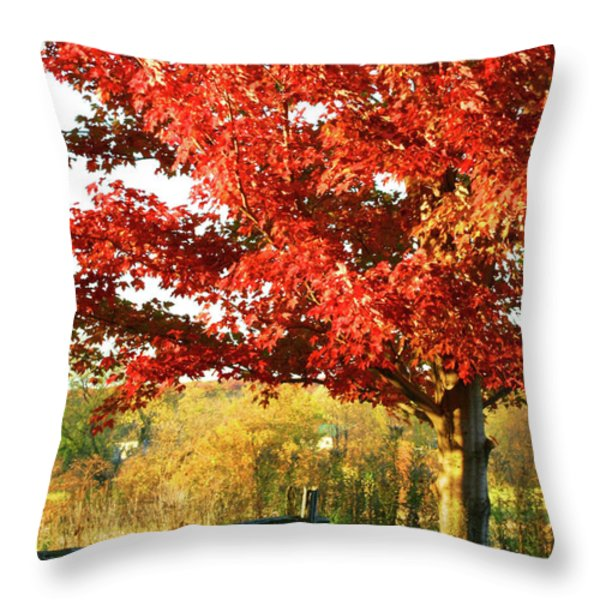 Beautiful Red Maple Tree Throw Pillow by Sandra Cunningham