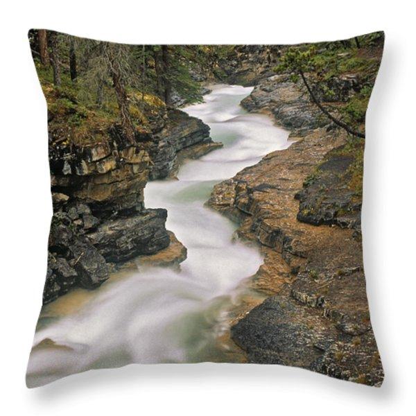 Beauty Creek, Banff National Park Throw Pillow by Darwin Wiggett