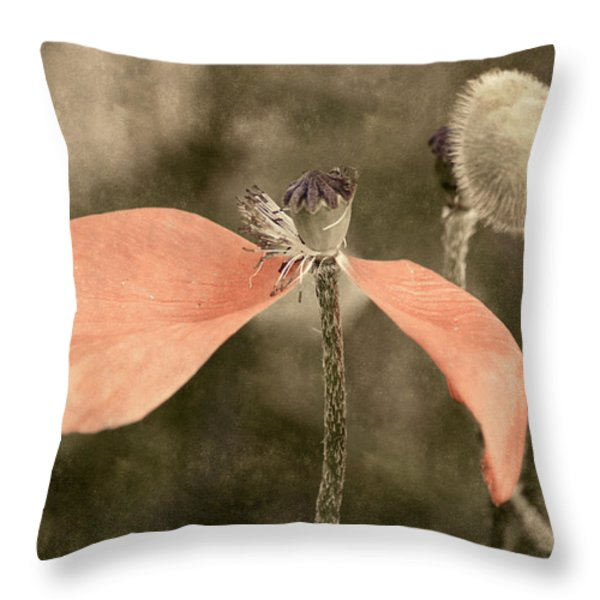 Beauty Fades Throw Pillow by Bill Pevlor