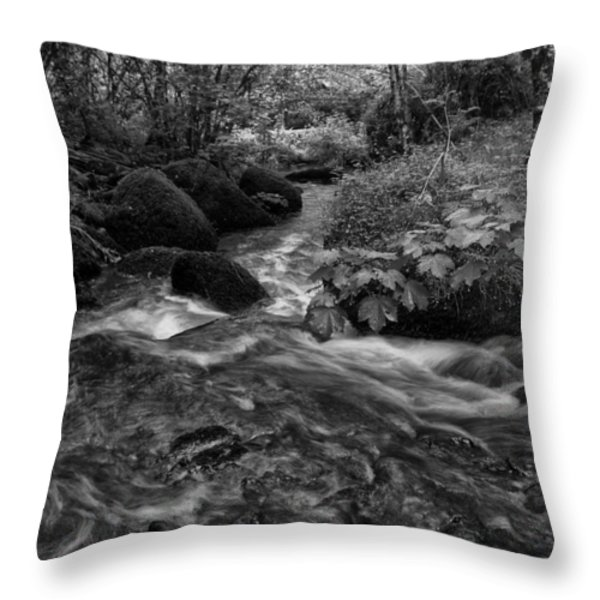 Becky Falls Down Stream Throw Pillow by Jay Lethbridge