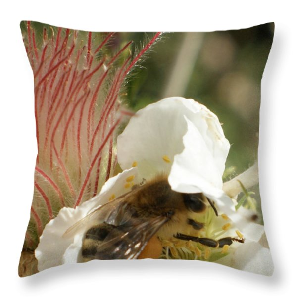 Bee Break Throw Pillow by Ernie Echols
