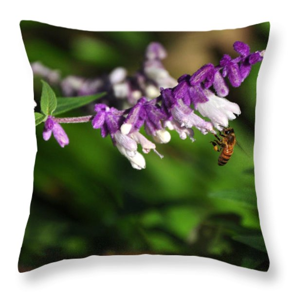 Bee on Flower Throw Pillow by Kaye Menner