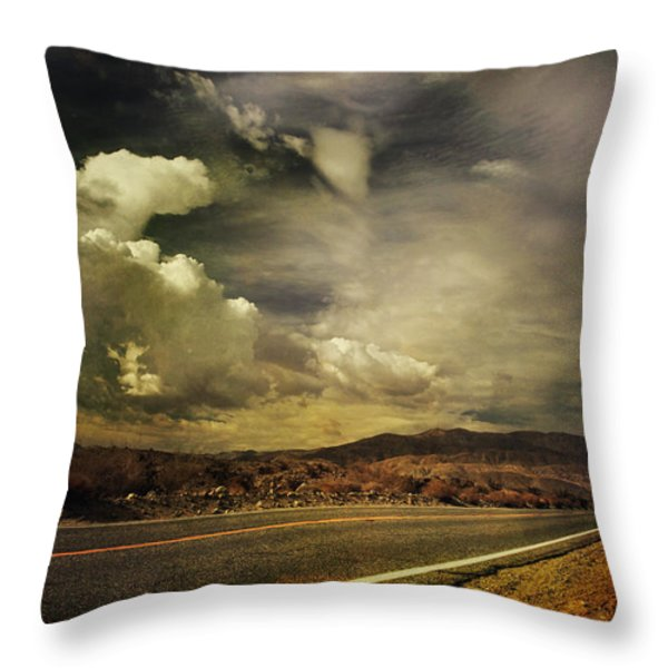 Been Down This Road Before Throw Pillow by Laurie Search