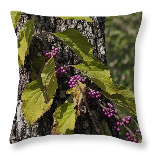 Behind The Fence Throw Pillow by Joseph Yarbrough