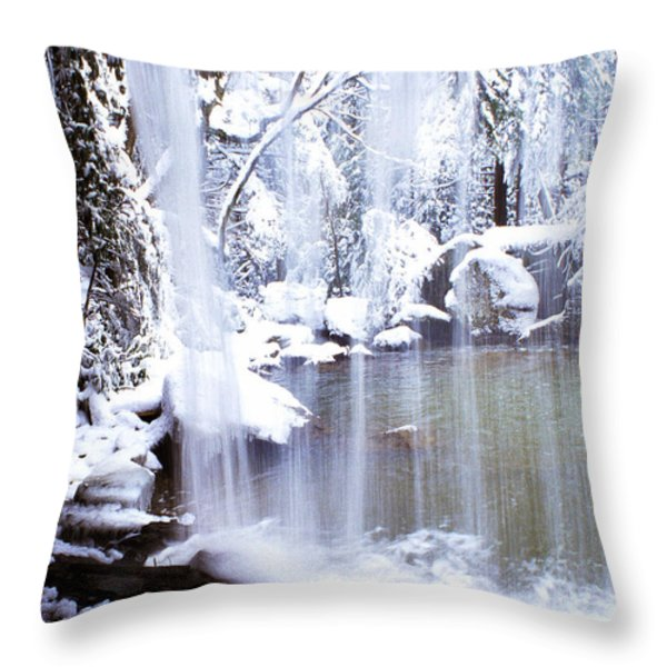 Behind the Veil Throw Pillow by Thomas R Fletcher