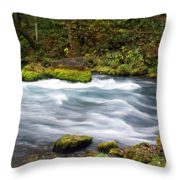 Big Spring Branch Throw Pillow by Marty Koch