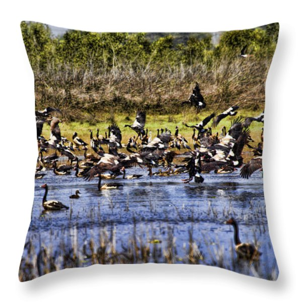 Billabong V10 Throw Pillow by Douglas Barnard