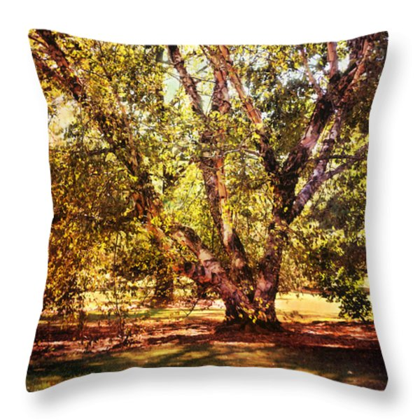 Birch Tree Throw Pillow by Jai Johnson
