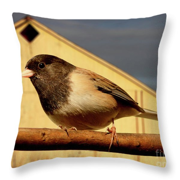 Bird House . 40D11078 Throw Pillow by Wingsdomain Art and Photography