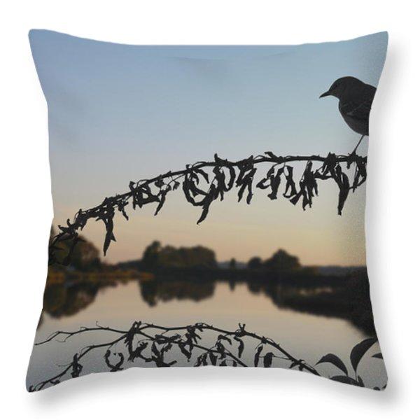 Bird Song At Last Light Throw Pillow by David Gordon