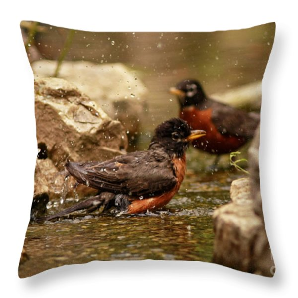 Birds Of A Feather Swim Together Throw Pillow by Inspired Nature Photography By Shelley Myke