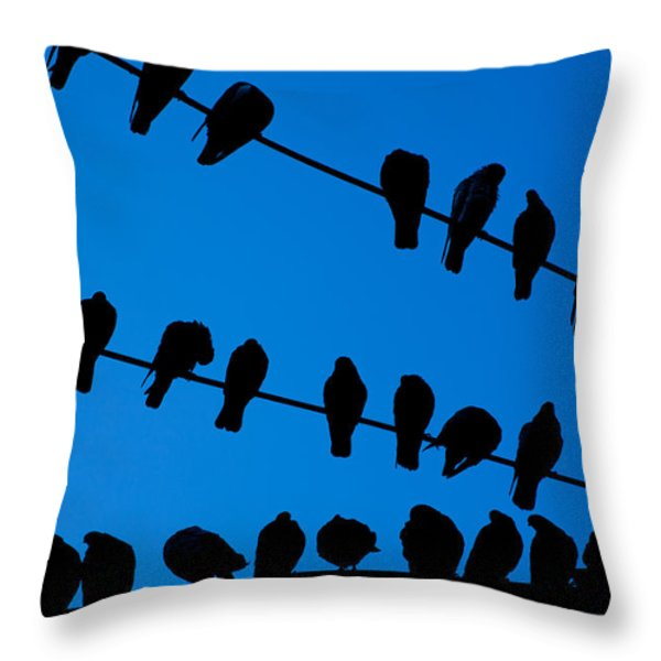 Birds On A Wire Throw Pillow by Karol  Livote