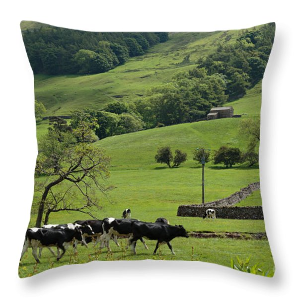 Bishopdale in the Yorkshire Dales National Park Throw Pillow by Louise Heusinkveld