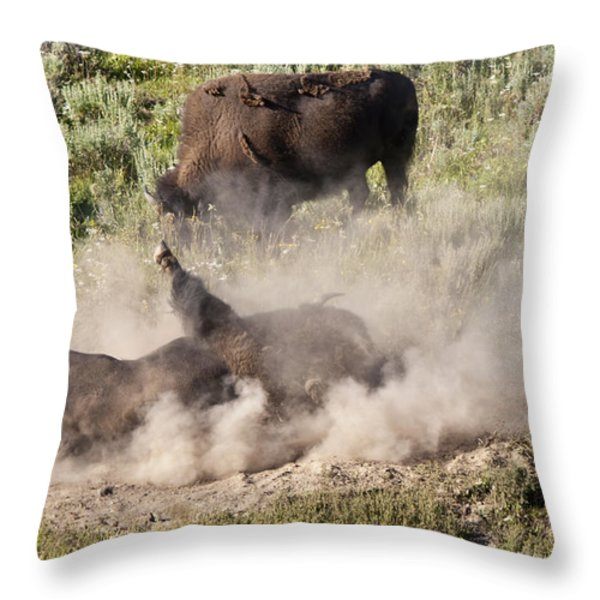 Bison Dust Bath Throw Pillow by Paul Cannon
