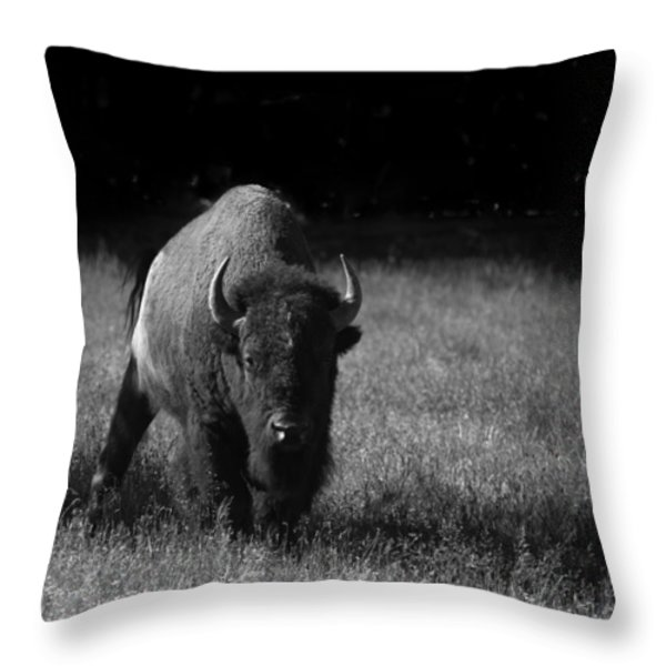 Bison Throw Pillow by Ralf Kaiser