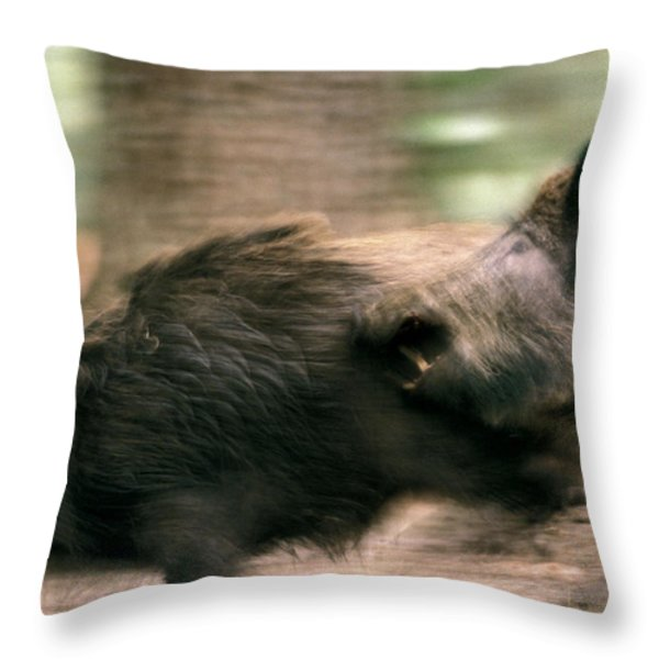 Biting Hogs Throw Pillow by Intensivelight