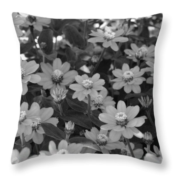 Black And White Flowers Throw Pillow by Amy Fose