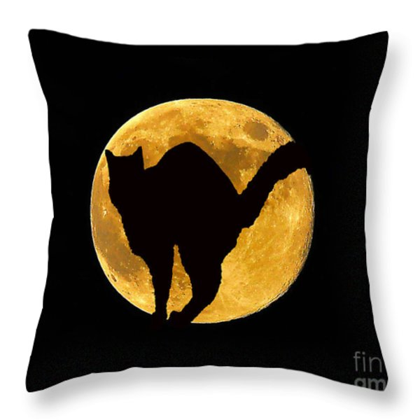 Black Cat Moon Throw Pillow by Al Powell Photography USA