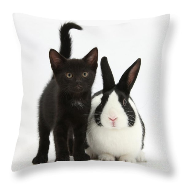 Black Kitten And Dutch Rabbit Throw Pillow by Mark Taylor