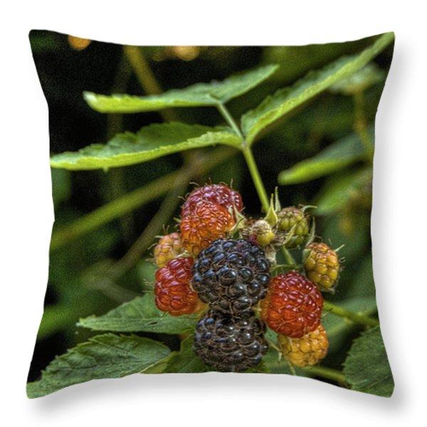 Black Raspberry Dream Throw Pillow by William Fields