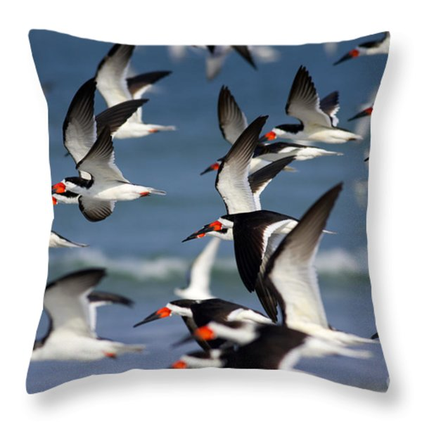 Black Skimmers Flock Throw Pillow by Clarence Holmes